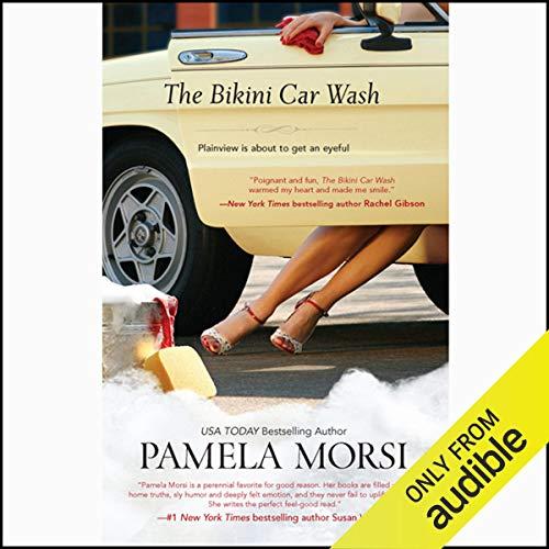 The Bikini Car Wash audiobook cover art