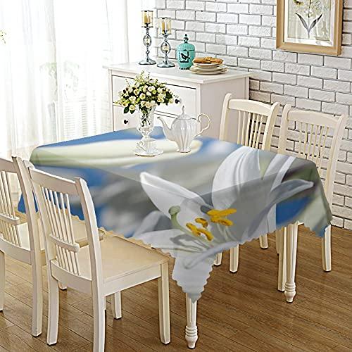 DSman Manteles de Mesa para Fiesta Antimanchas Resistente a Líquidos de Estilo Moderno para Mesa Tejido Estampado Engrosado