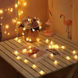 Koxly 49 Ft 100 LED Globe String Lights Decorative Lighting Strings Plug in Fairy Lights with Remote Control for Indoor and Outdoor College Dorm Room