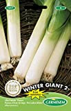 Germisem Winter Giant 2 Semillas de Puerro 4 g
