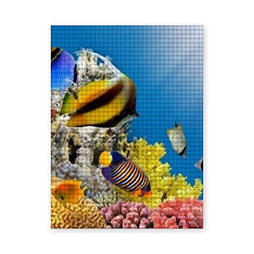 Pintura de diamante 5D DIY,Foto de una colonia de coral en la cima de un arrecife,Mar Rojo,Egipto,Pintura de punto de cruz de cristal bordado de diamantes imagen de arte,20x24 inch