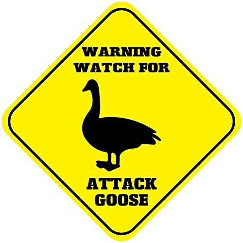 """Warning Watch for Attack Goose Crossing Funny Novelty SignVinyl Sticker Decal 8"""""""