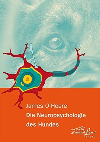 Die Neuropsychologie des Hundes