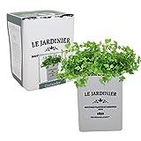 Le Jardinier Coriander Set – Coriandro Anzuchtset