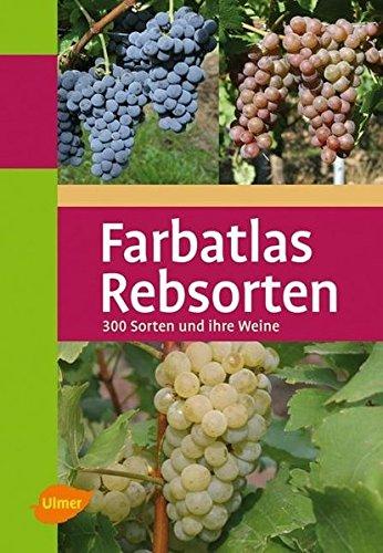 Farbatlas Rebsorten: 300 Sorten und ihre Weine