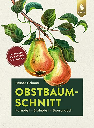 Obstbaumschnitt: Kernobst - Steinobst - Beerenobst. Der Klassiker für die Praxis jetzt in 10. Auflage