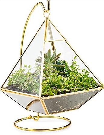 Geometric Pyramid Hanging Terrarium