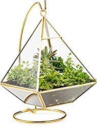 Pyramid Hanging Terrarium with Stand