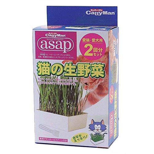 キャティーマン asap 猫の生野菜 2回分