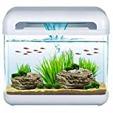Mantovani Derby Pet Diffusion Aquarium en Verre, Blanc/Transparent, 15 L, 4500 g