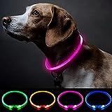 Collar de perro con luz rosa, collar de perro de seguridad personalizado con USB recargable, súper brillante, collar intermitente para perro, 4 colores para perros pequeños, medianos y grandes