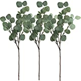 Supla 3 Pcs Artificial Silver Dollar Eucalyptus Leaf Spray in Green 25.5' Tall Artificial Greenery Holiday Greens Christmas Greenery