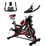 Naspaluro Exercise Bike, Stationary Bikes for Exercise & fitness Home Gyms,Peloton Bike with Adjustable Seat&Handlebar/Phone Holder/Heart Moniter/LCD Monitor