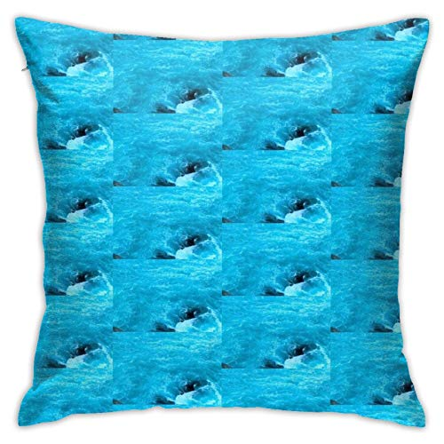Brain Melt Xx Ocean Home Decorative Throw Pillow Covers for Sofa Couch Cushion Pillow Cases 18x18 Inch