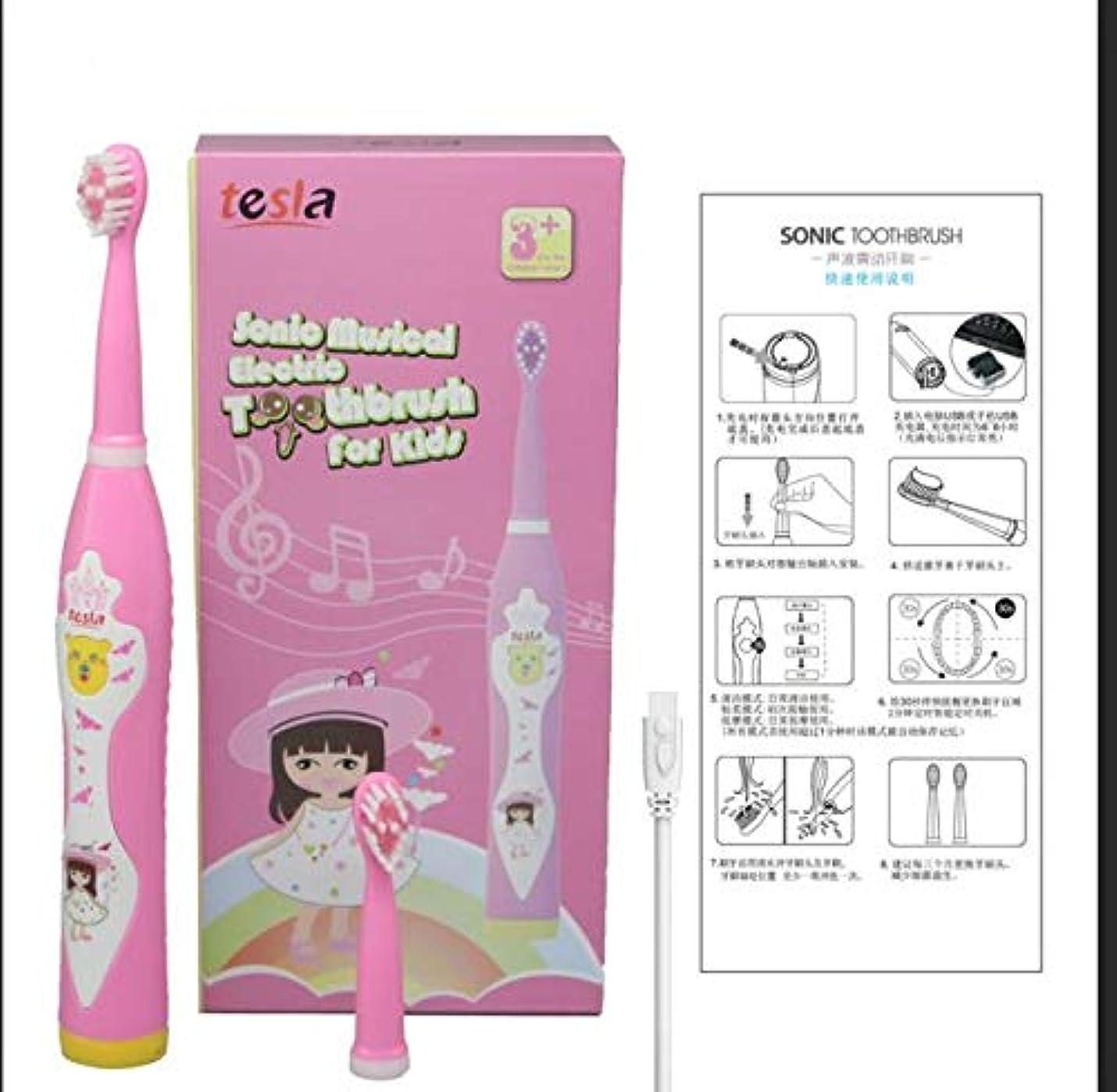 発揮する子供っぽいとらえどころのない旅行 FDAホームアウトドアソニックポータブルusb自動プロスマート子供子供大人電気歯ブラシ歯ブラシ (pink)