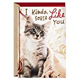 Hallmark Valentines Day Card for Cat Person/New Relationship (Kinda,...