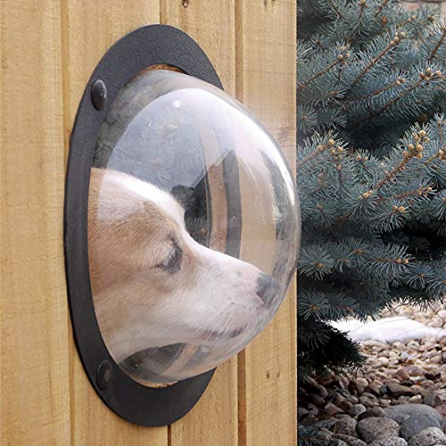 TTAOTOTECH Zaunfenster für Haustiere, langlebige Acrylkuppel, Haustierzaun für Hunde und Katzen, verhindert Springen, reduziert Bellen und Graben, inkl. Schrauben und Muttern, 31,5 x 31,5 x 12,5 cm