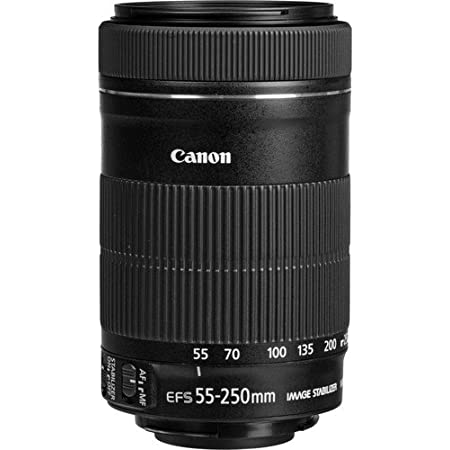 Canon Ef S 55 250 Mm F4 5 6 Is Stm Objektiv Für Canon Kamera