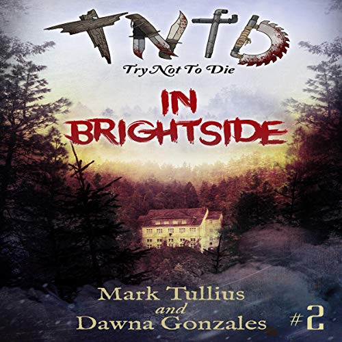 Couverture de In Brightside: An Interactive Adventure