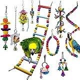 TankMR Lot de 10 jouets à mâcher pour perroquet, balançoire, perchoirs à mâcher pour cage conures, perruches, cacatoès, aras, pinsons - Couleur aléatoire