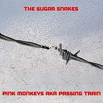 Pink Monkeys AKA Passing Train