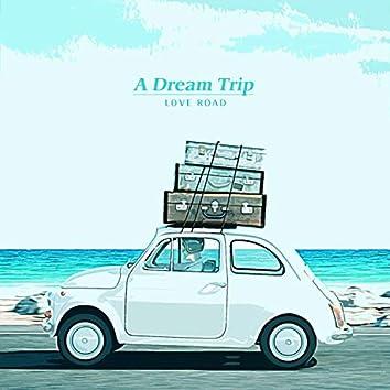 꿈의 여행