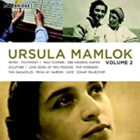 Mamlok: Music Vol.2 (Sintra/ Polyphony/ Der Andreas Garten/ Sculpture 1) by Claire Chase (2010-12-14)