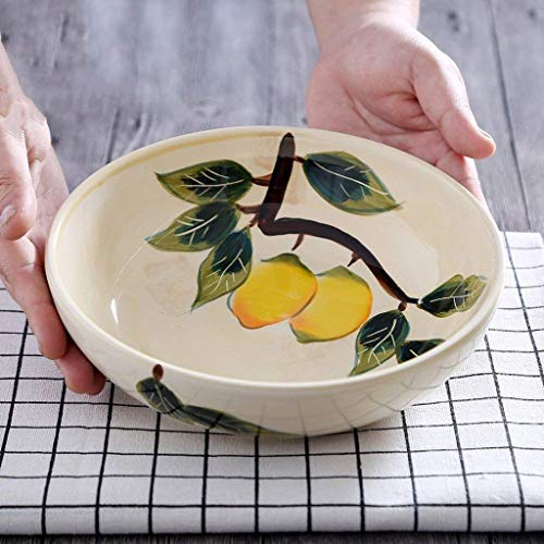 O&YQ Cuencos de Almacenamiento para el Hogar Vajilla Pintura de Frutas Pintada a Mano para el Hogar Plato de Cerámica de 7.5 Pulgadas Cena Plato de Pastel de Porcelana Plato de Refrigerio Plato de Po