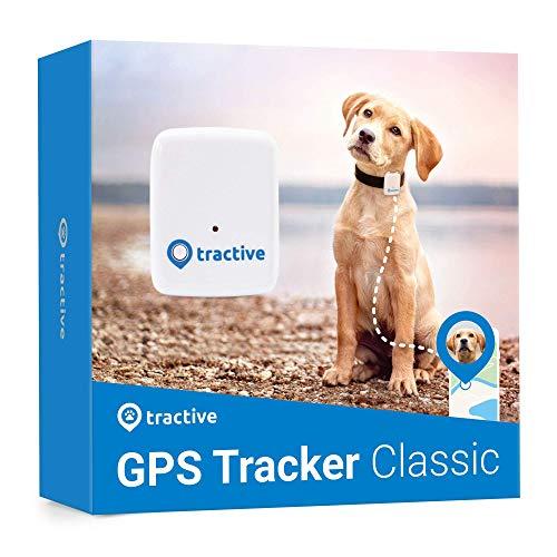Tractive Localizador GPS para perros, rastreador con rango ilimitado, blanco