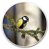 Impresionantes pegatinas de vinilo (juego de 2) 30 cm – gran Tit pequeño pájaro divertido calcomanías para portátiles, tabletas, equipaje, reserva de chatarras, neveras, regalo genial #45208