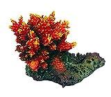 AQL Decoración Coral de Resina para Acuario Modelo Acropora 6 cm 9 x 6 x 7 h