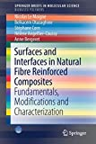 Surfaces and Interfaces in Natural Fibre Reinforced Composites: Fundamentals, Modifications and...