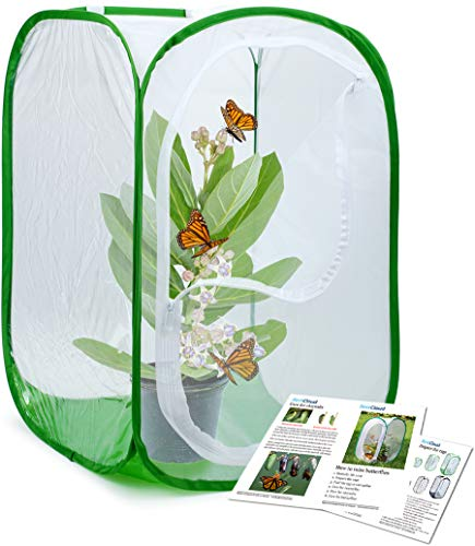 RESTCLOUD Professional Butterfly Habitat Insect Cage Caterpillar Enclosure Pop-up Polyester Bottom for Easier Clean