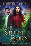 Storm Born (The Witches of Wheeler Park Book 1) (English Edition)