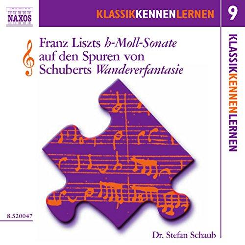 Die h-Moll-Sonate von Liszt auf den Spuren von Schuberts Wandererfantasie (KlassikKennenLernen 9) Titelbild