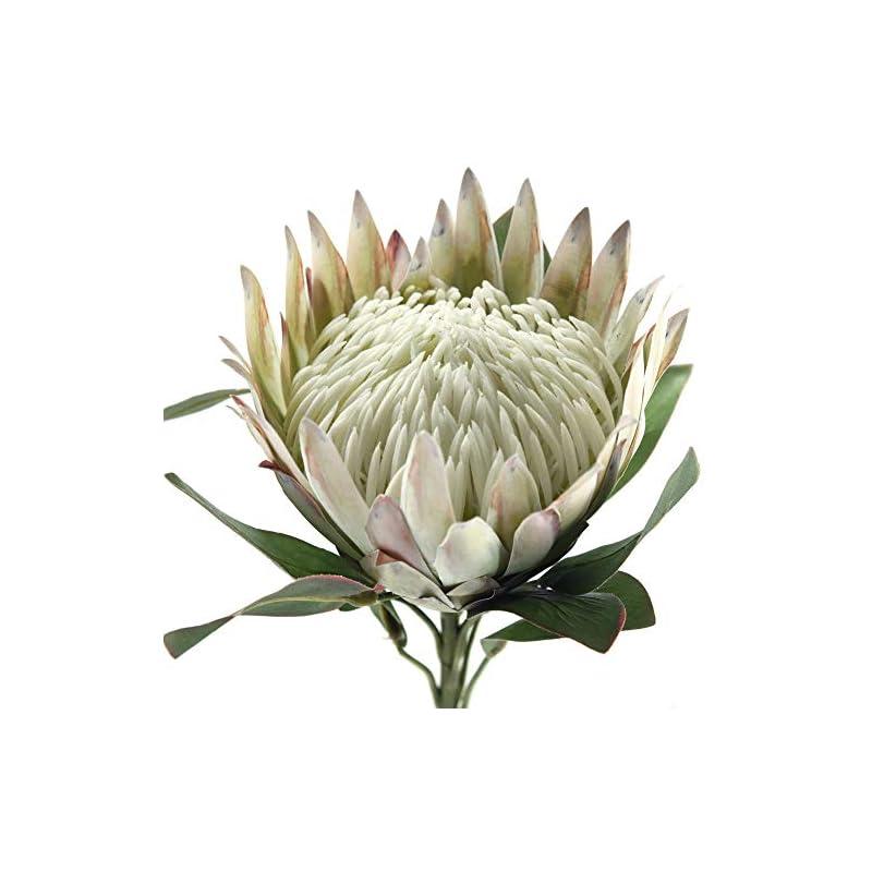 silk flower arrangements fiveseasonstuff king protea real touch silk artificial flowers for wedding bouquet home kitchen 30 inches tall tropical flower arrangements decor 1 stem (chestnut white)
