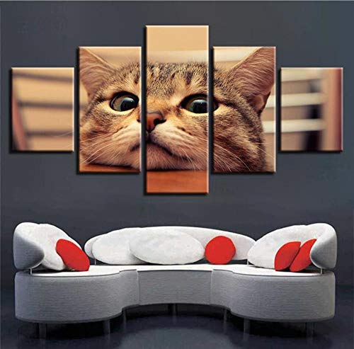 RZYLYHH 5 lienzos decoración Pared HD Arte Animal Gato búho Decoracion de Pared dormitorios Modernos decoración