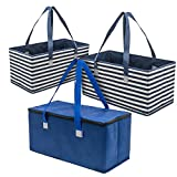 Planet E Reusable Grocery Picnic Shopping Bags - Heavy Duty Colorful Collapsible Insulated Zip Coolers (Pack of 3)