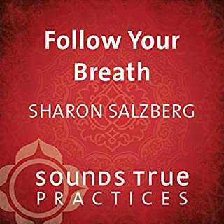 Follow Your Breath audiobook cover art