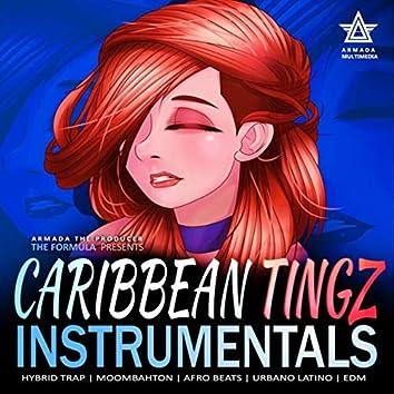 Caribbean Tingz Vol. 1 ((Instrumental)s)