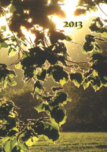 Tagebuch Kalender 2013 - Blätter in der Abendsonne: Endlich genung Platz für dein Leben! DIN A4, 1