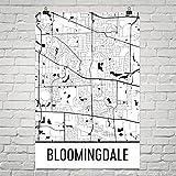Bloomingdale IL Map, Bloomingdale Illinois Art, Bloomingdale Print, Bloomingdale Poster, Wall Art, Illinois Gifts, Map of Illinois Poster 12'x18'