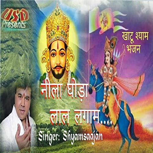 Shyamsaajan