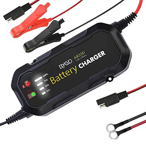 Batterie Ladegerät für Suzuki Gladius 650 BC2