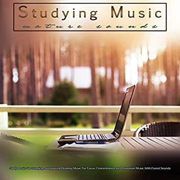 Studying Music: Study Music and Nature Sounds For Studying, Background Reading Music For Focus, Concentration and Relaxation Music With Forest Sounds