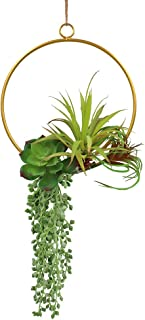 LSME Artificial Succulents Hoop Wreath for Front Door Wedding Backdrop Home Geometric Decor Round (Not Sprouting)