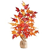 """Collections Etc Colorful Fall Harvest Lighted Tabletop Tree, 29"""" H"""