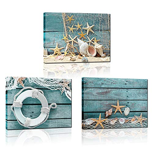 Biuteawal- 3 Piece Canvas Wall Art Starfish Shell on Teal Board Painting Prints Beach Nature Picture Canvas Artwork for Home Kitchen Bathroom Living Room Wall Decor Ready to Hang