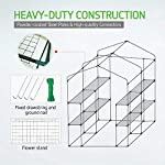 Vivosun 57x57x77-inch mini walk in green house with window and anchor plant garden hot house 2 tiers 8 shelves 14 multi-shelves, large space- crafted with 8 wired shelves, overall dimension:57x57x77-inch, our vivosun green house is large enough for starting seed, sprouting young plants, blooming flowers and cultivating fresh vegetables; 3 tiers and different height between each shelf provide a possibility to grow both small and large plants side by side roll-up entrance & windows- zippered roll-up entrance at the front provides an easily access to the greenhouse and a bigger operating space; 2 side windows bring a better air circulation of the green house, even if in hot weather, your lovely plants can breath fresh air; and the custom meshes on the window effectively isolate the pests from harming plants high-quality & long life time pe cover- our vivosun greenhouse is double-stranded edge banding, making the cover more tough and more durable; thanks to the anti-cold agent added in the cover, its lifetime is 3 months more than usual cover; in addition, our high-quality pe cover can prevent the harm from uv and bad weather but offering the best solar performance, which will nourish your plants very well