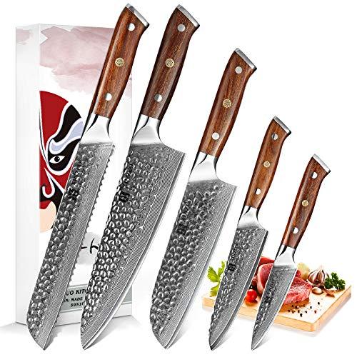 XINZUO Acero de Damasco Set Cuchillo de Cocinero 5 Piezas Cuchillos de Cocina, Acero de Alto Carbono Cuchillo Chef Santoku Pan Universal Fruta Afilado Cuchillo de Japonés -Mango Desert Ironwood
